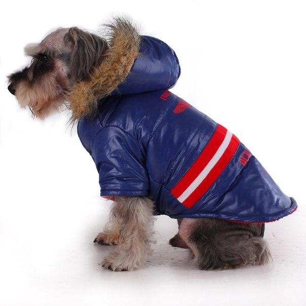 Собачья одежда на алиэкспресс на русском